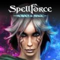 SpellForce: Герои и Магия 1.2.5