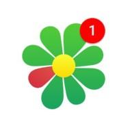 ICQ 8.4