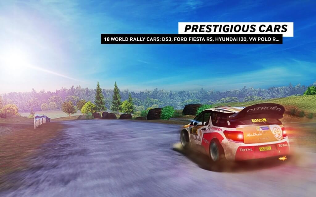 WRC The Official Game - механика игры