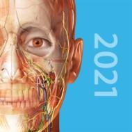 Human Anatomy Atlas 2021 2021.2.26
