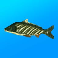 Реальная Рыбалка 1.14.4.678