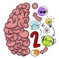 Brain Test 2 0.79
