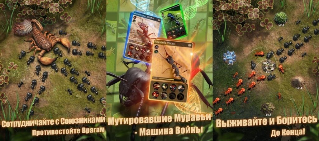The Ants Underground Kingdom - развивайте колонию муравьев