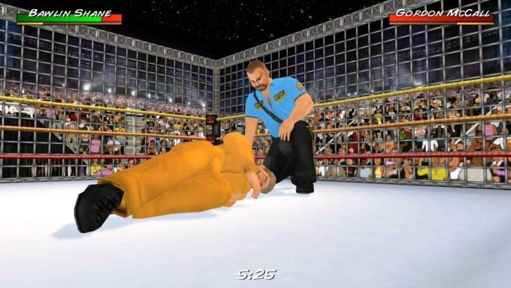 Несколько увлекательных игровых режимов в игре Wrestling Revolution 3D